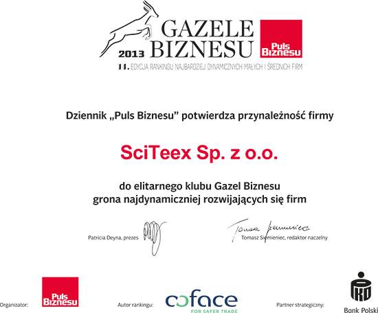 gazele_biznesu_2013